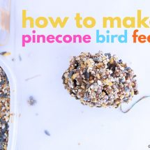 How To Make A Simple Pinecone Bird Feeder