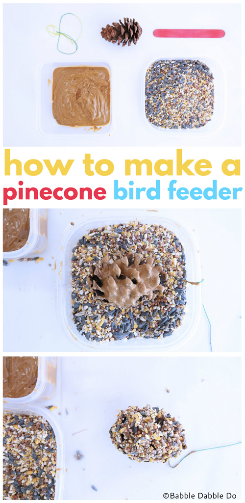 Making a simple pinecone bird feeder is a great science project for little ones; not only does it teach them about being aware of the animals that live all around us, it is messy good fun!