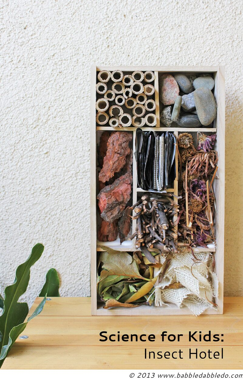 Science for Kids: Make a DIY Insect Hotel for the upcoming winter!