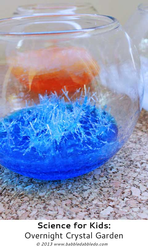 science for kids learn how to grow crystals overnight using epsom salts - Crystal Garden