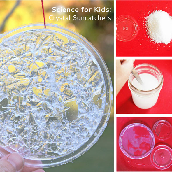 Fun Science Experiment: Crystal Suncatchers - Babble Dabble Do