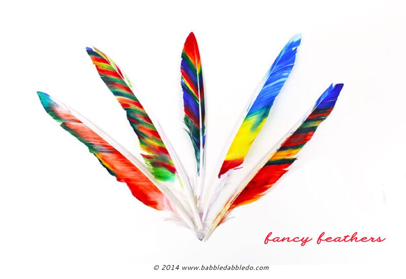 Feather Craft for Kids: Learn two methods for transforming white craft feathers into colorful, beautiful fancy feathers!