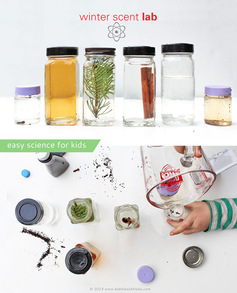 Easy Science for Kids: Set up a Winter Scent Lab