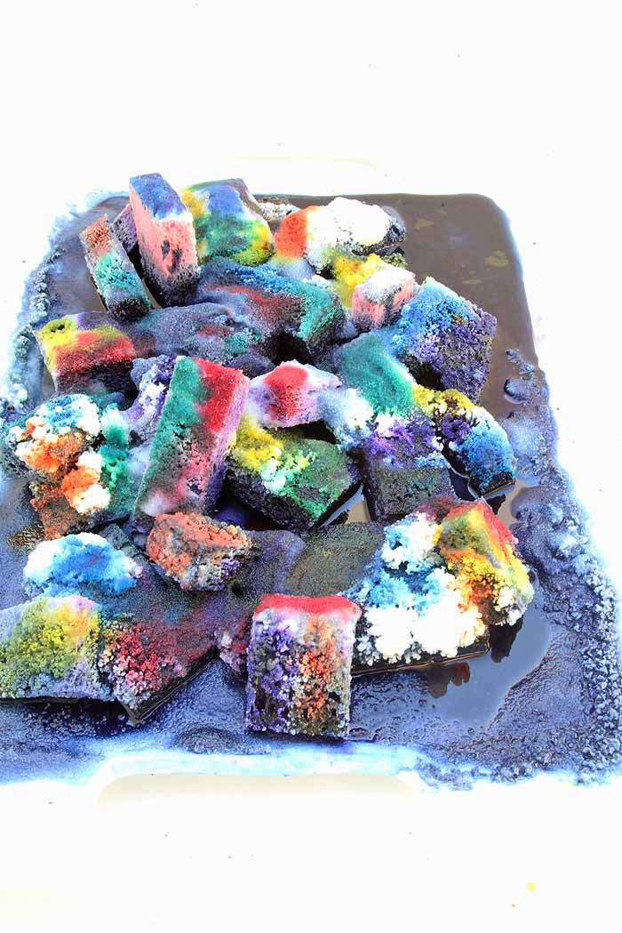 Science for Kids: DIY Crystal Landscapes - Babble Dabble Do