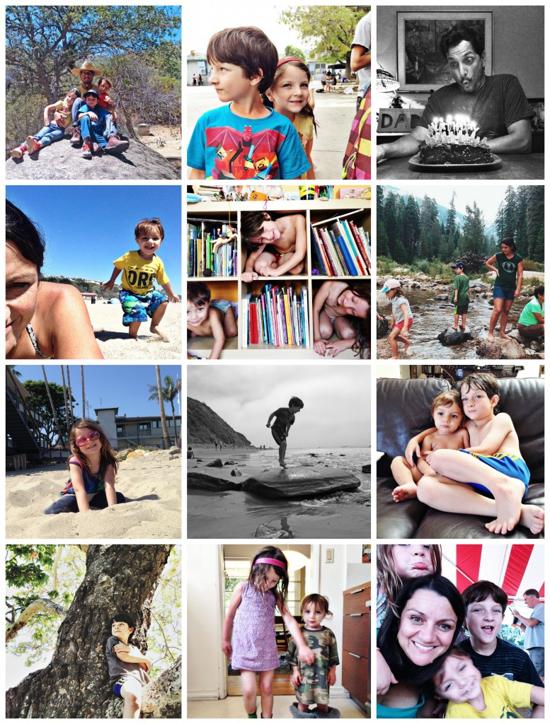 2015 dz collage