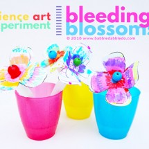 STEAM Project Idea: Bleeding Blossoms
