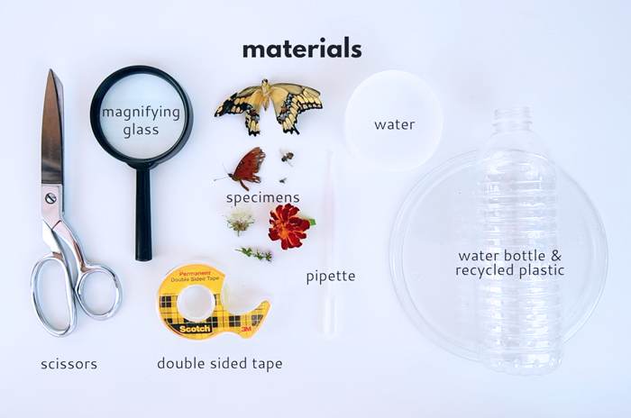 Learn how to make a microscope using a few recycled items and a water drop! A simple science project for kids exploring light and optics