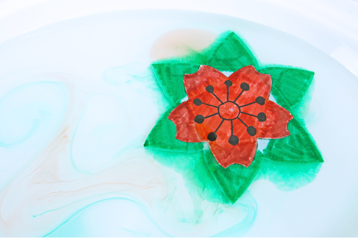 This artful paper flower for kids to make is magical….and scientific! Explore absorption, diffusion and kirigami in this STEAM project.