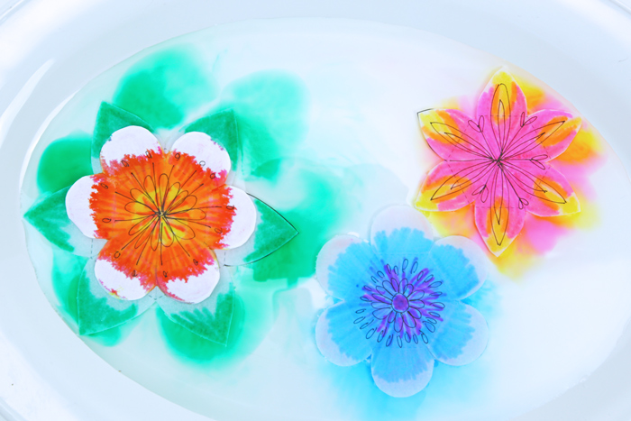 A Paper Flower For Kids To Make Magical Water Blossoms Babble